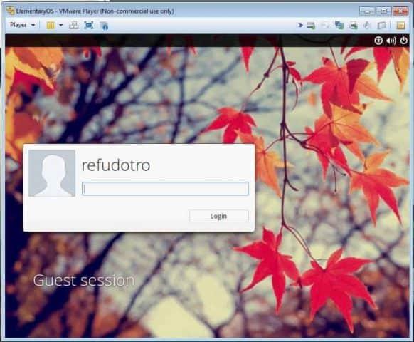 elementaryos in vmware virtualizare