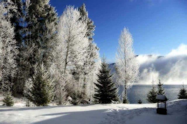 Cele mai frumoase imagini de iarna