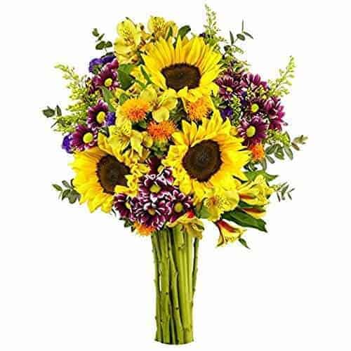 florarie bucuresti